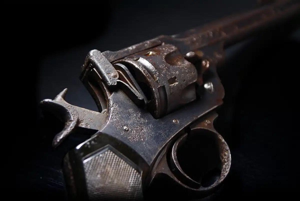 cabalas BC Firearms Academy PAL Courses