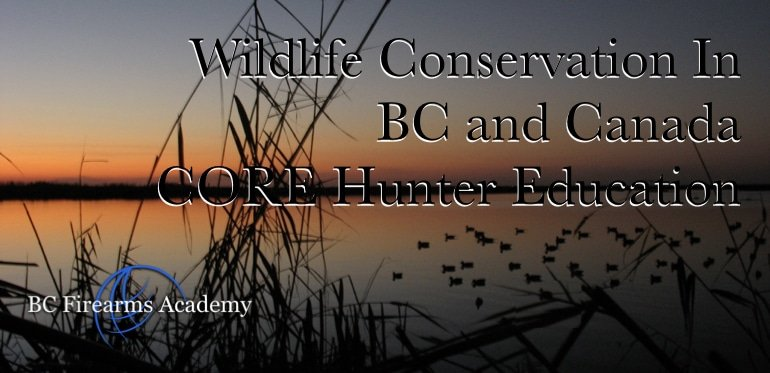 Wildlife Conservation In BC and Canada