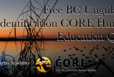 Free BC Ungulates Identification CORE Hunter Education Quiz