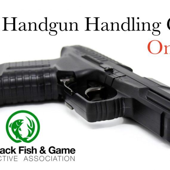 Basic Handgun Familiarization Course NEXT COURSE JANUARY 11, 2020
