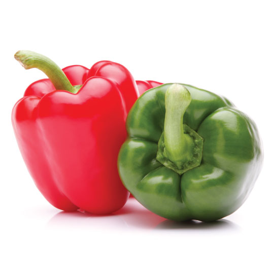 red and green bell peppers for dehydration