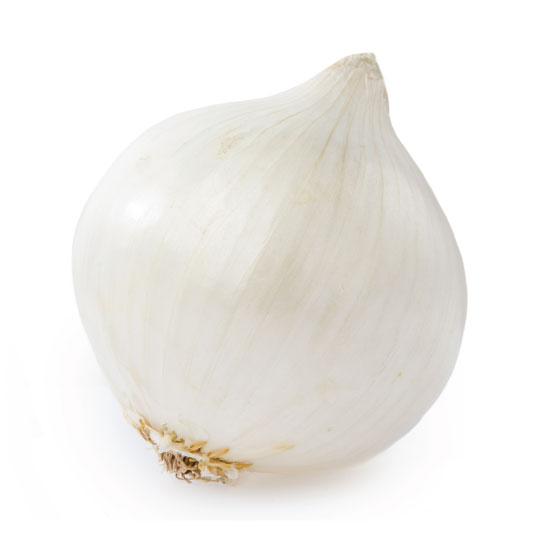 白洋葱 Image