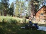 Grey Meadow