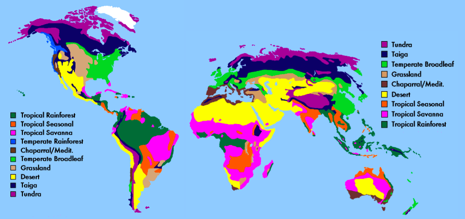 World Biome Temperate Forest Map