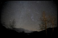Geminids from Invermere By Robert Ede
