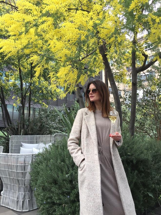 dafne mimosa Mandarin Barcelona