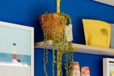Hey Shop plantas