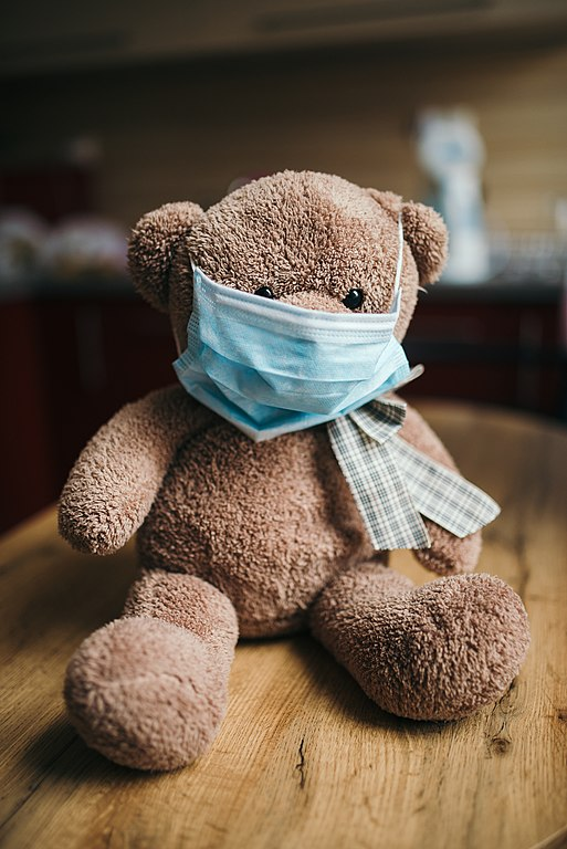 teddy bear with surgical mask