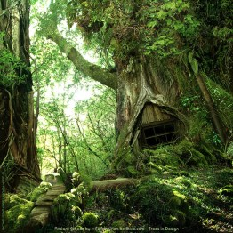 Ancient Echoes by =Forestgirl http://forestgirl.deviantart.com/