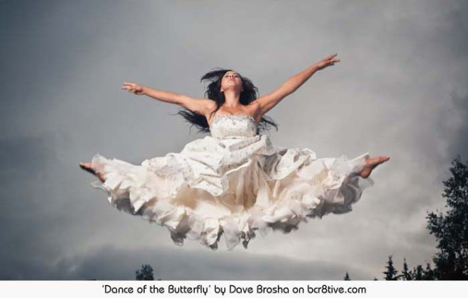 Dance of the Butterfly - Dave Brosha