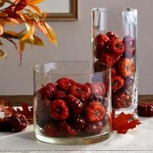 Dried Pumpino Vase Filler
