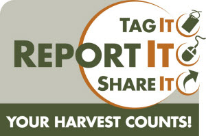 REPORT YOUR HARVEST
