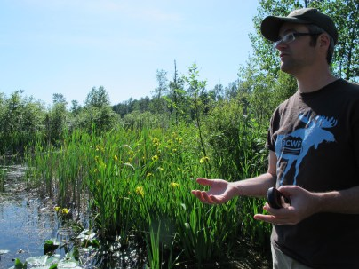 Neil introduces invasive control project next to Yellow Flag iris