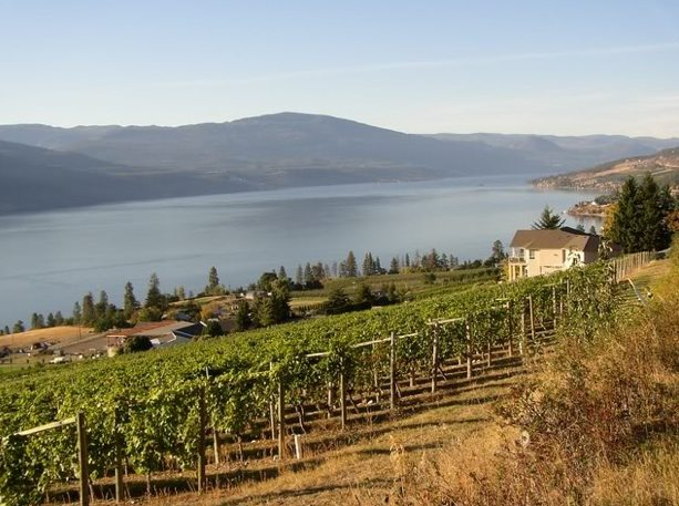 Northern bound! Erin visits BC wine country's outer edge