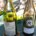 Wild Goose Mystic River Vineyard Pinot Blanc 2007