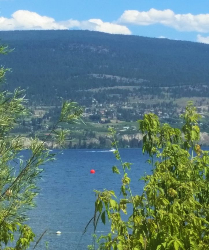 local g lake (2)