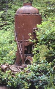 WCT2005-13a