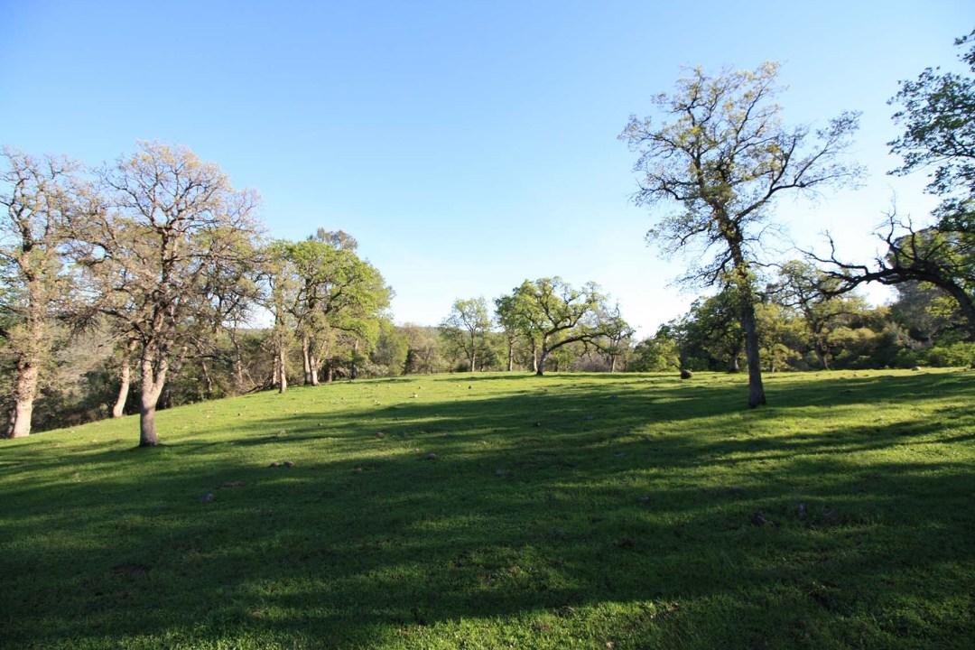 Ranch 4 (3)