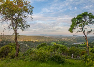 Excelsior Ranch 3 – On top of the world