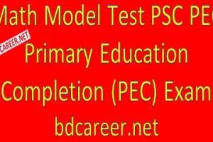 PSC PEC Math Model Test