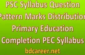 PSC Syllabus Question Pattern Marks Distribution