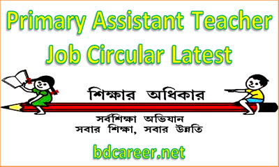 Primary Assistant Teacher Job Circular
