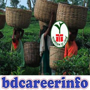 Bangladesh Tea Board Job Circular 2017