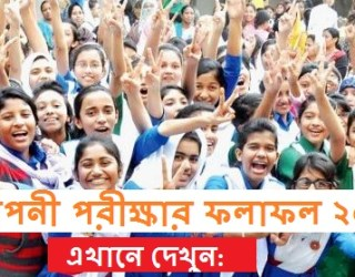 Somaponi Result 2017 PSC Result, Check Somaponi Result 2017 PSC Result, Somaponi Result 2017 bd, Somaponi Result 2017, PSC Result 2016, Full Somaponi PSC Result 2017, www.dperesult.teletalk.com.bd PSC Result 2017, Somaponi Result 2017 Marksheet Download, Somaponi Result 2017 Marksheet, Somaponi Scholarship Result 2017, Somaponi Scholarship Result 2018,How to check Somaponi Result 2017 PSC Result