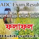 BADC Exam Result 2020