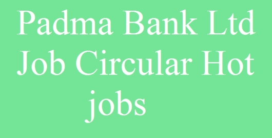 padma bank ltd jobs circular 2019