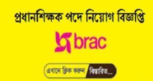 Brac Head Teacher Job Circular 2019