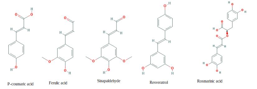 Pecan shell tea contains ferulic acid and derviatives
