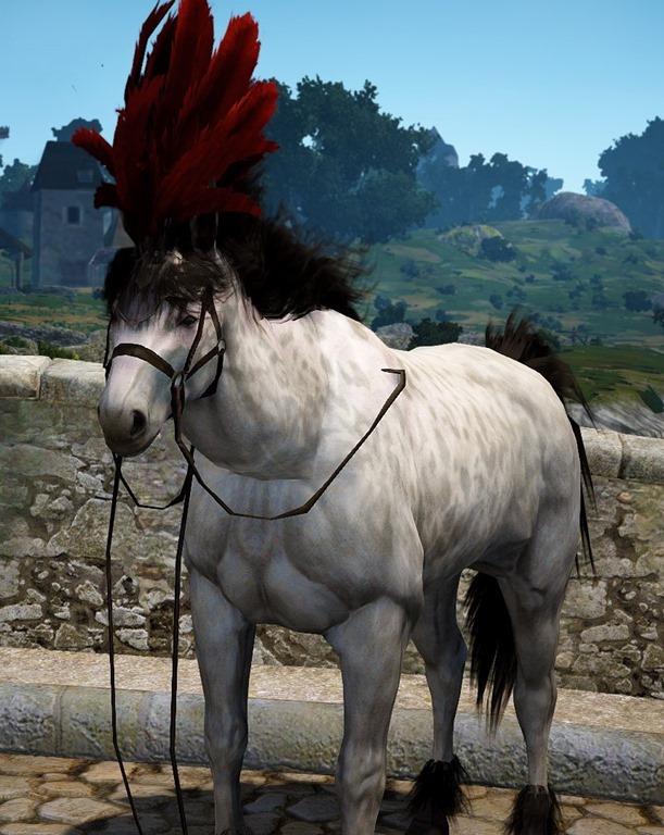 BDO Fashion   Light Leather Horse Gear (Black Desert Online)