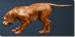 Brown Fighting Dog Side