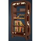 Leather Bookshelf
