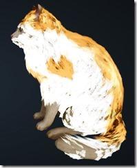 Orange Brindle Cat Side
