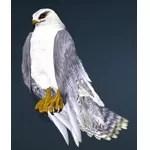 [Tier 1] Sky Hawk