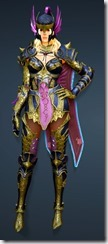 bdo-aker-guard-sorc-full