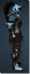 bdo-clead-warrior-costume-2