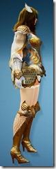 bdo-tyrie-ranger-costume-2