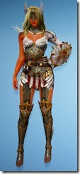 bdo-venslar-long-valkyrie-costume-min-dura