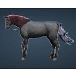 [Tier 3] Horse