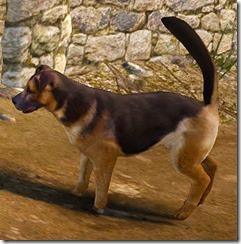 Tier 3 Shepherd Dog Side