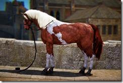 Tier2Female_Horse