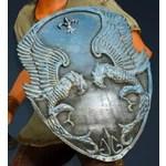 [Warrior] Cavaro Shield
