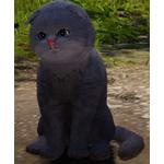[Tier 3] Moon Cat