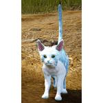 [Tier 4] Tabby Cat
