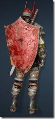 bdo-rove-ruud-warrior-costume-min-dura-2