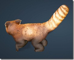 bdo-red-panda-pet2