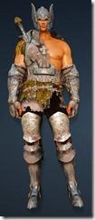 bdo-warrior-evergart-costume-min-dura